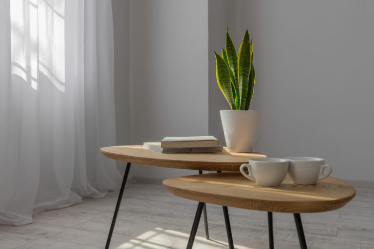Bloom coffee table small - Фото №14